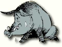 Wildschwein Obelix